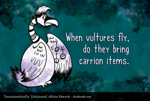 Taxonomically Unbound - When vultures fly, do they bring carrion items.