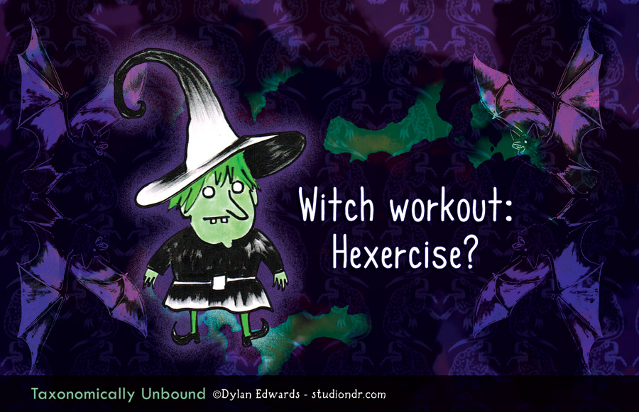 Taxonomically Unbound - Witch workout: Hexercise?