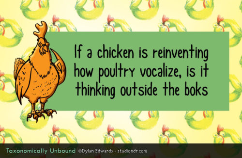 Taxonomically Unbound: If a chicken is reinventing how poultry vocalize, is it thinking outside the boks